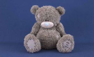 прекрасный плюшевый медведь