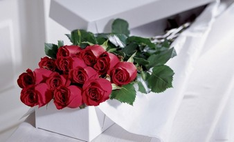 совершенный букет из роз
