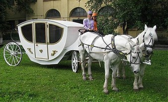 роскошная прогулка на лошадях
